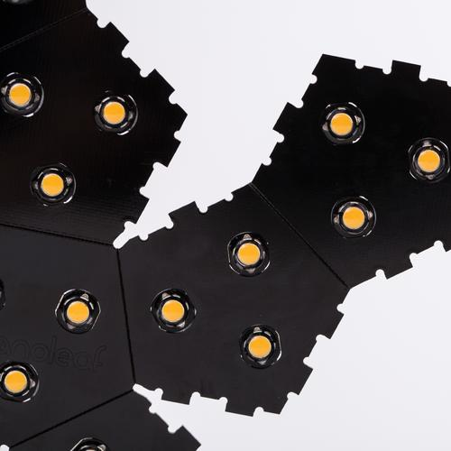 Dimmable LED Light Bulb | Nanoleaf Bloom | Black/White/Leaf